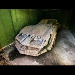 13 лет в гараже. Помыть и продать спорткар